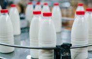 На Вологодчине будут делать молочные продукты с применением нанотехнологий