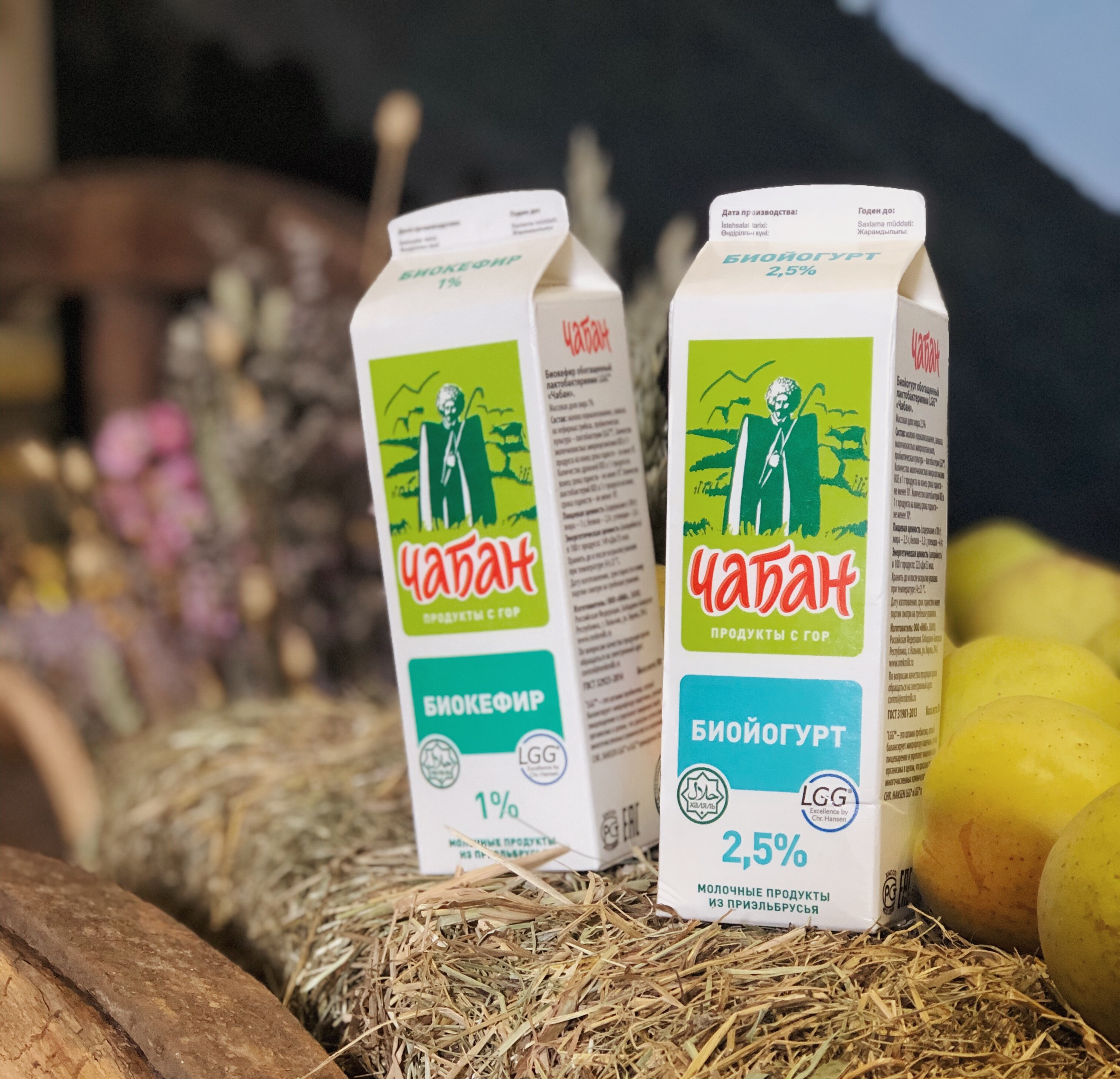 Северо-кавказский бренд «ЧАБАН» представил продукцию с уникальными пробиотиками LGG