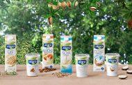 Компания Danone может начать выпуск растительных напитков в РФ