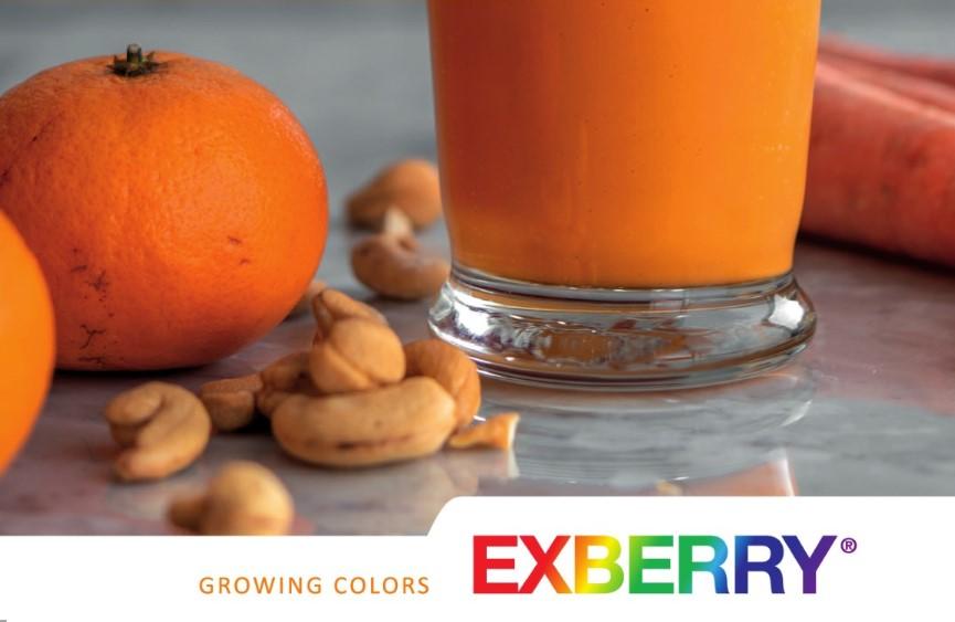 Натуральные красители  в производстве  продуктов питания
